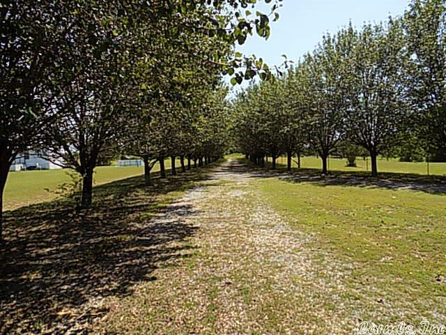 126 Cotton Hill Road