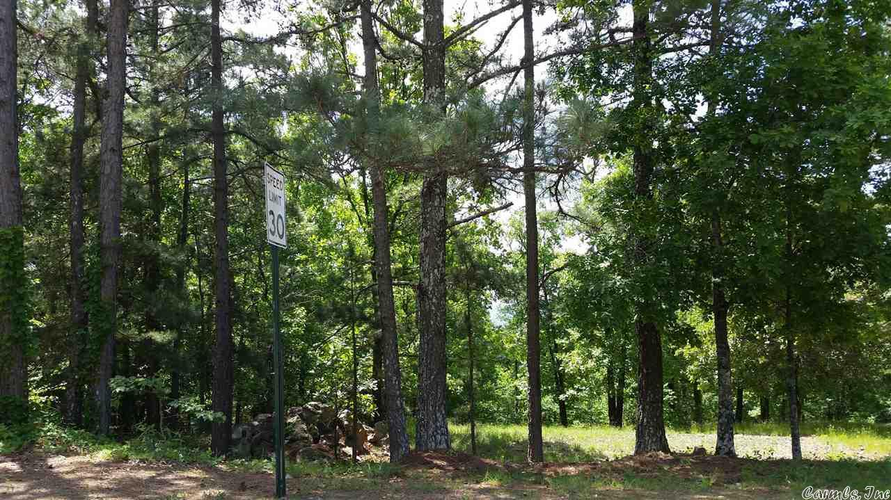 137 CASTANO DRIVE, HOT SPRINGS VILLAGE, AR 71909  Photo 1