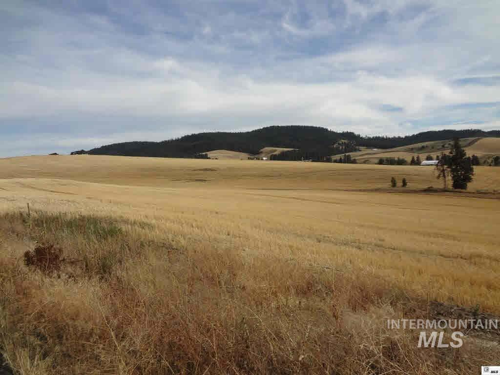 Agricultural Land por un Venta en TBD Loess Road TBD Loess Road Viola, Idaho 83872