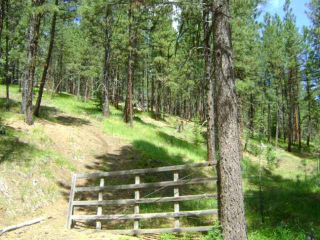 Recreational Property for Sale at TBD Bear Gulch TBD Bear Gulch Sumpter, Oregon 97877