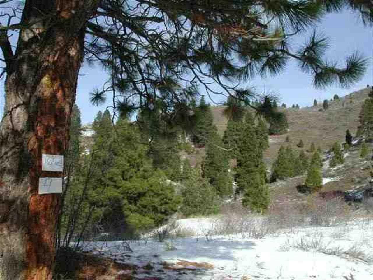 Tract 4 Robie Ridge, Boise, ID 83716
