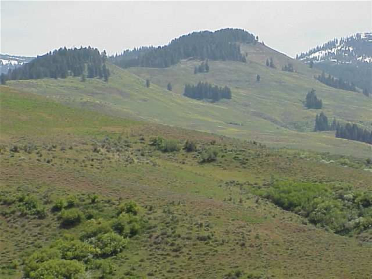 TBD Middle Fork, Council, ID 83612