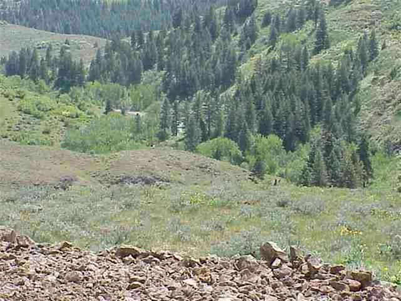 Land for Sale at Lot 4 Middle Fork Rd Council, Idaho 83612