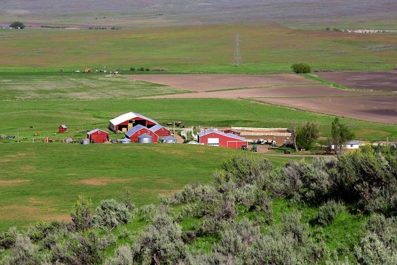 Chacra / Estancia por un Venta en 3355 Farm To Market Road Midvale, Idaho 83645