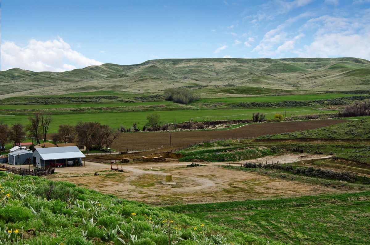 Chacra / Estancia por un Venta en 6447 Little Willow Rd Payette, Idaho 83661