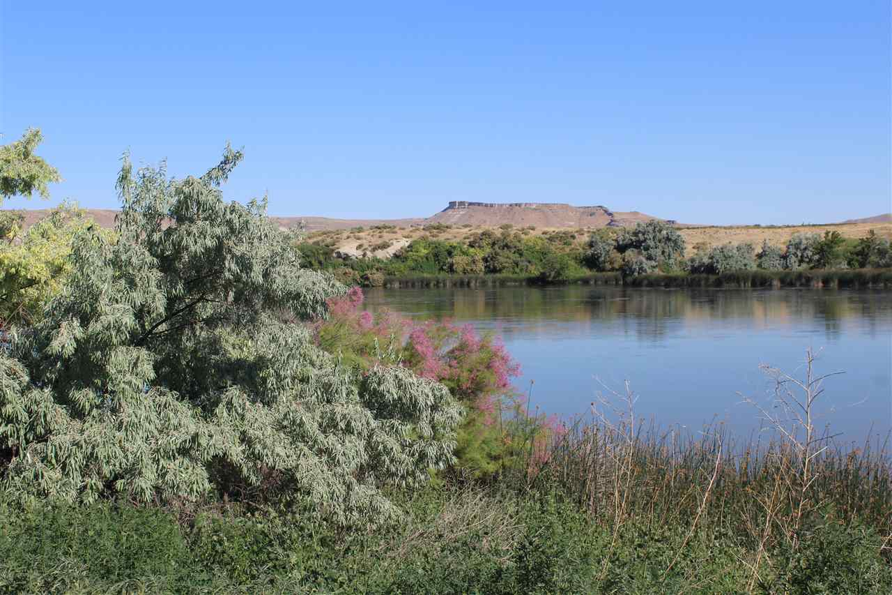 Agricultural Land for Sale at TBD Napton River Road Adrian, Oregon 97901
