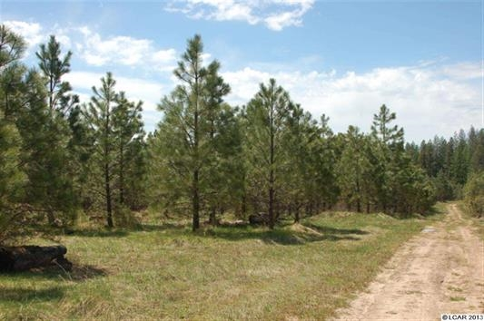 Land for Sale at TB Woods Road TB Woods Road Weippe, Idaho 83553