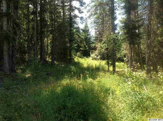 Parcel 9 Maggie Butte Rd, Kamiah, ID 83536