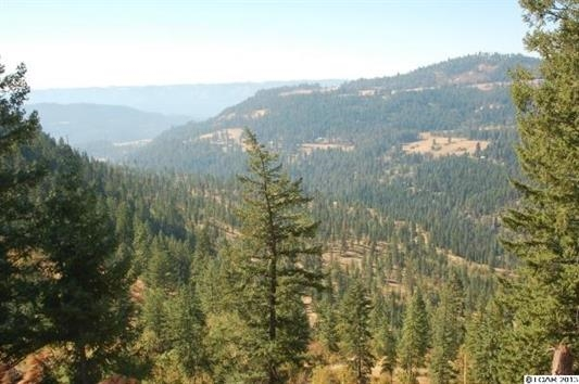 TBD Huckleberry Butte Rd, Orofino, ID 83544