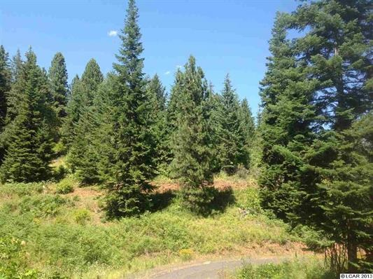 Parcel 6 Maggie Butte Rd, Kamiah, ID 83536