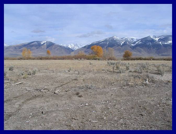 Land for Sale at 0 Furey Ln Parcel 7 May, Idaho 83253