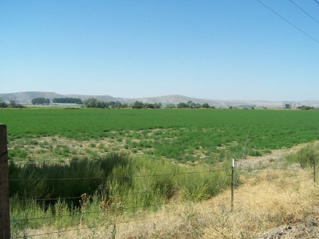 Farm for Sale at 2010 HWY 20 2010 HWY 20 Vale, Oregon 97914