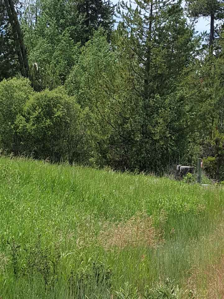 Land for Sale at 125 E Lake Fork Road #1 McCall, Idaho 83638