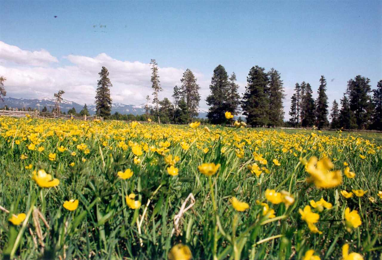 Ranch for Sale at TBD 723 Acres McCall, Idaho 83638