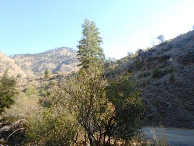 Land for Sale at Lots 8,18,19 Salmon River Road Riggins, Idaho 83549