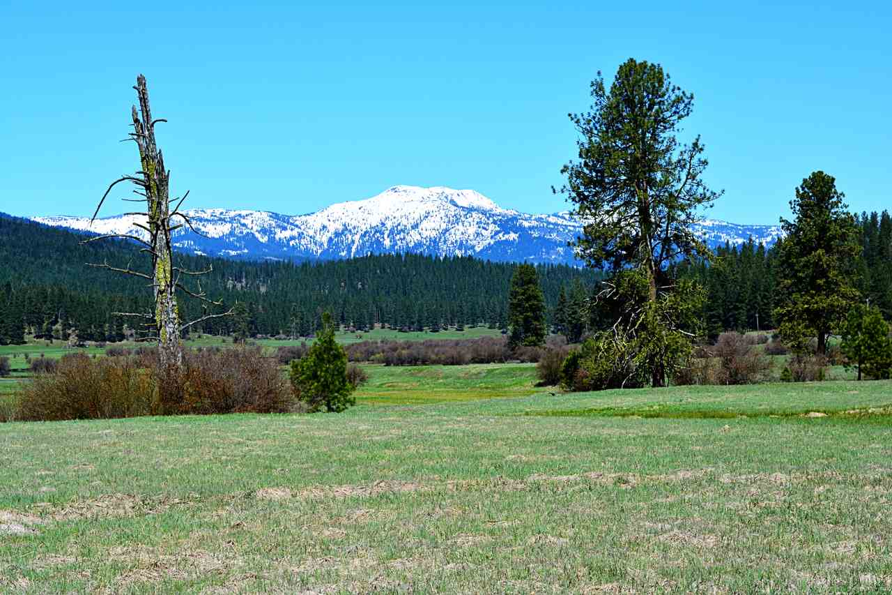 Terreno por un Venta en Tbd Hwy 95 New Meadows, Idaho 83654