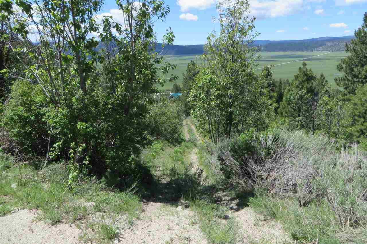 Additional photo for property listing at 10239 Timberrim  Cascade, Idaho 83611