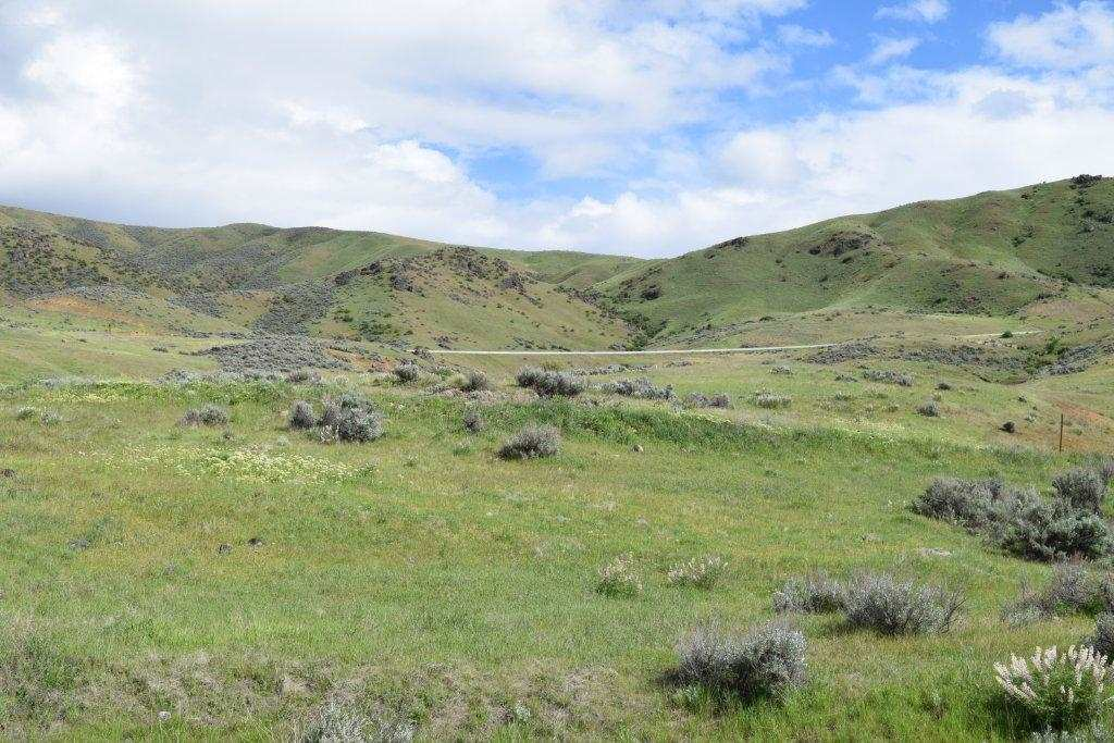 Additional photo for property listing at Lot 13 Webster Ranch  Horseshoe Bend, 爱达荷州 83629