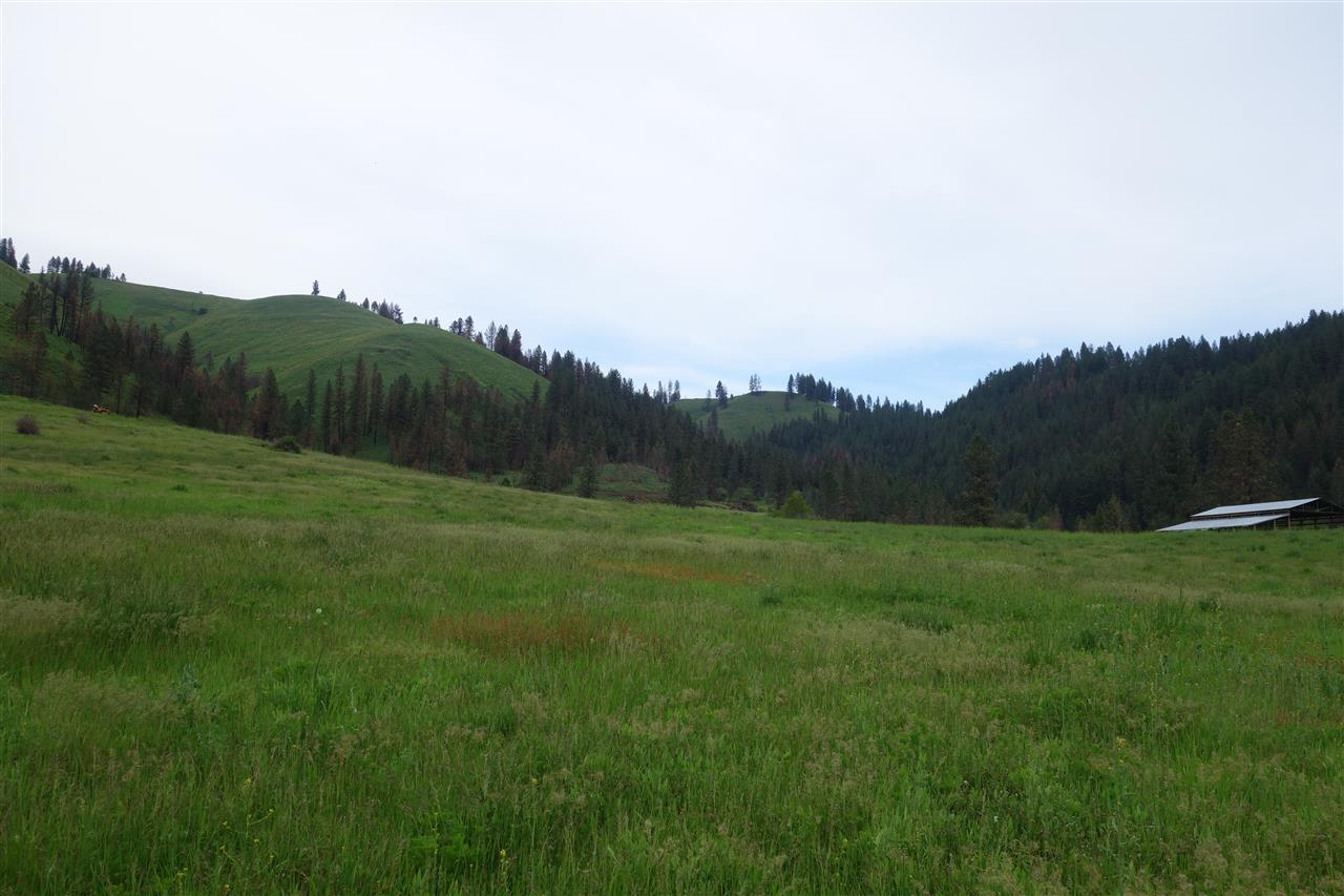 Farm / Ranch for Sale at Tbd Frasure Grade Kamiah, Idaho 83536