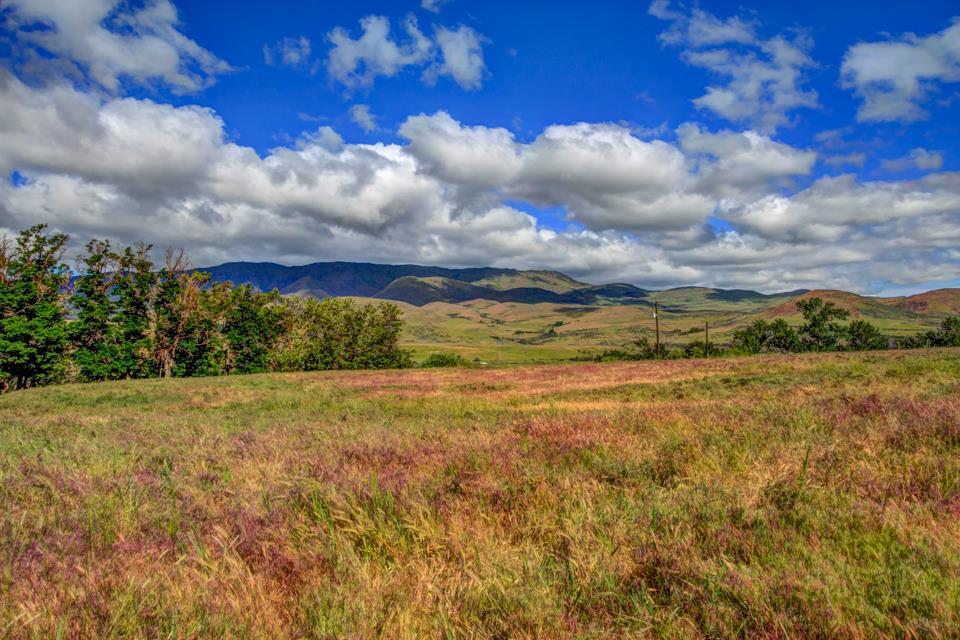Additional photo for property listing at 79xx Sweet Ola Hwy  Sweet, Idaho 83670