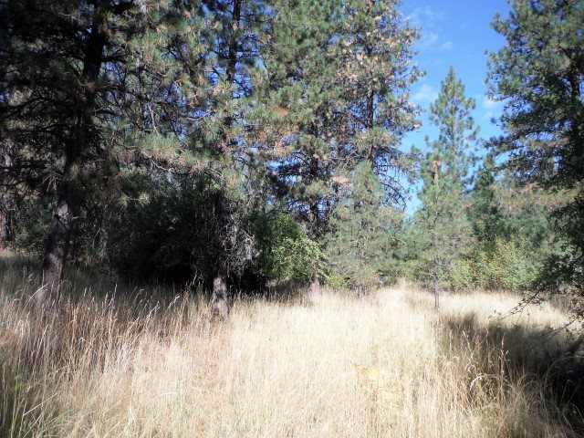 Additional photo for property listing at Lot 21 Warm Springs Amd 1  Garden Valley, Idaho 83622