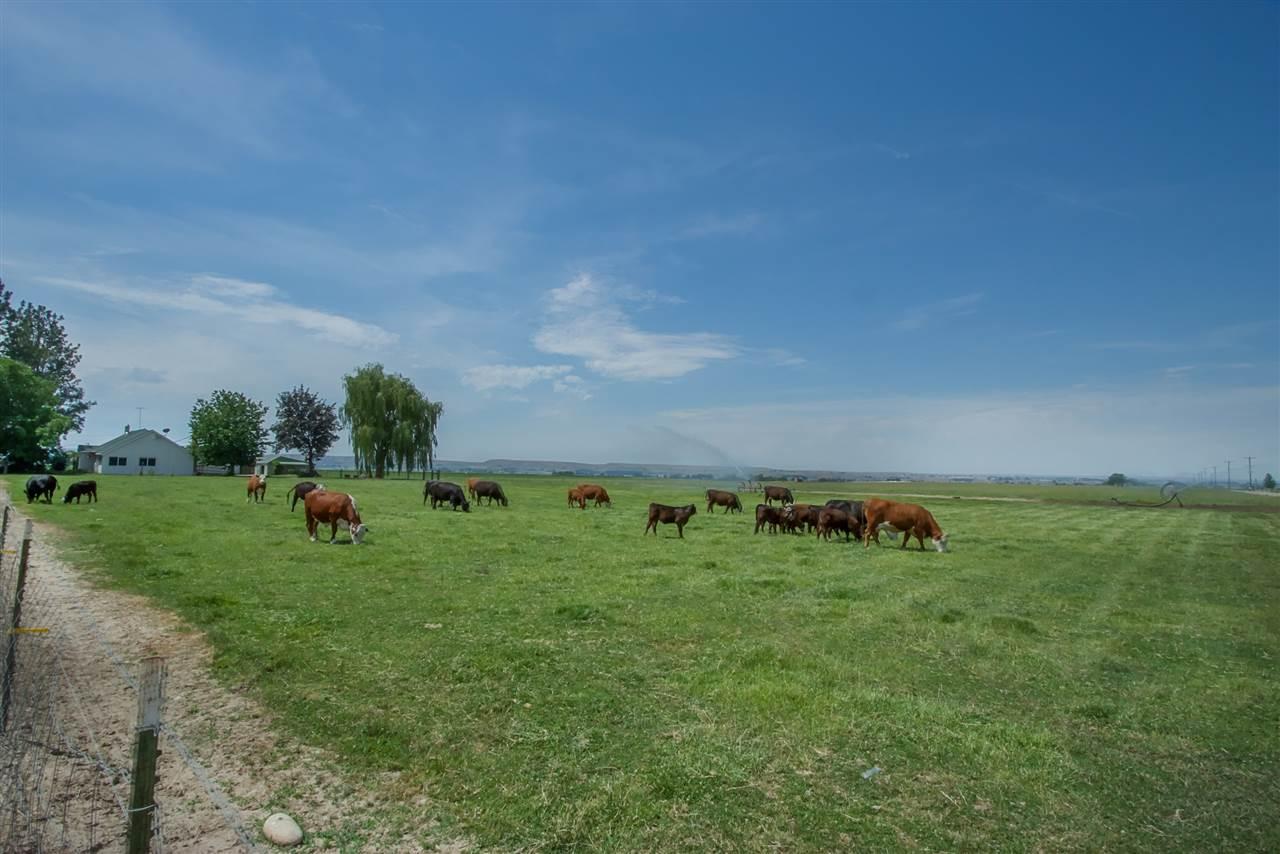 Farm / Ranch for Sale at 8855 Merril Rd Emmett, Idaho 83617