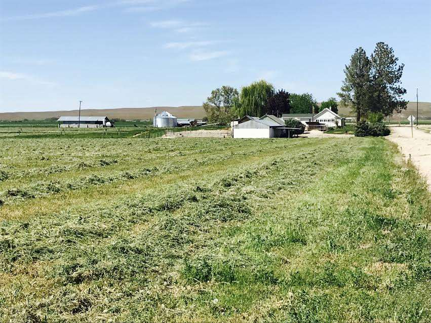 Additional photo for property listing at 8855 Merril Rd  Emmett, Idaho 83617