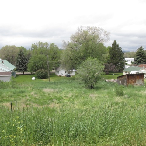 Additional photo for property listing at Tbd Cedar  American Falls, Idaho 83271