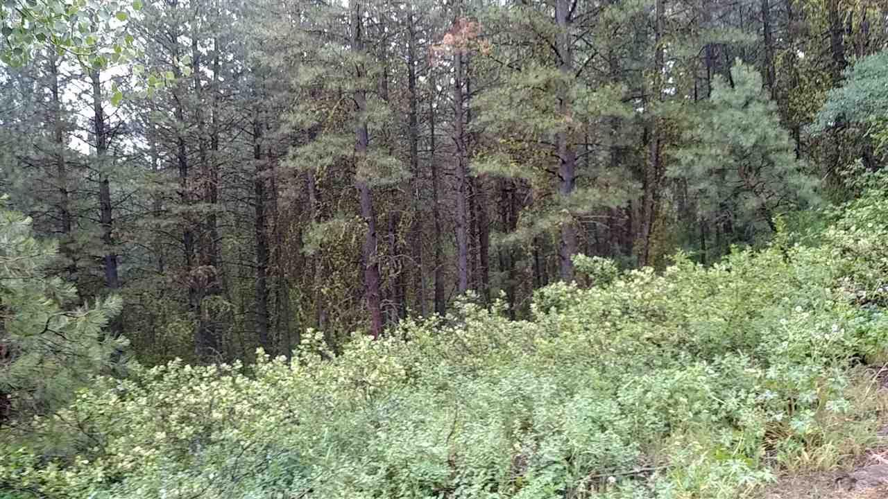 Land for Sale at Roundup Banks, Idaho 83602