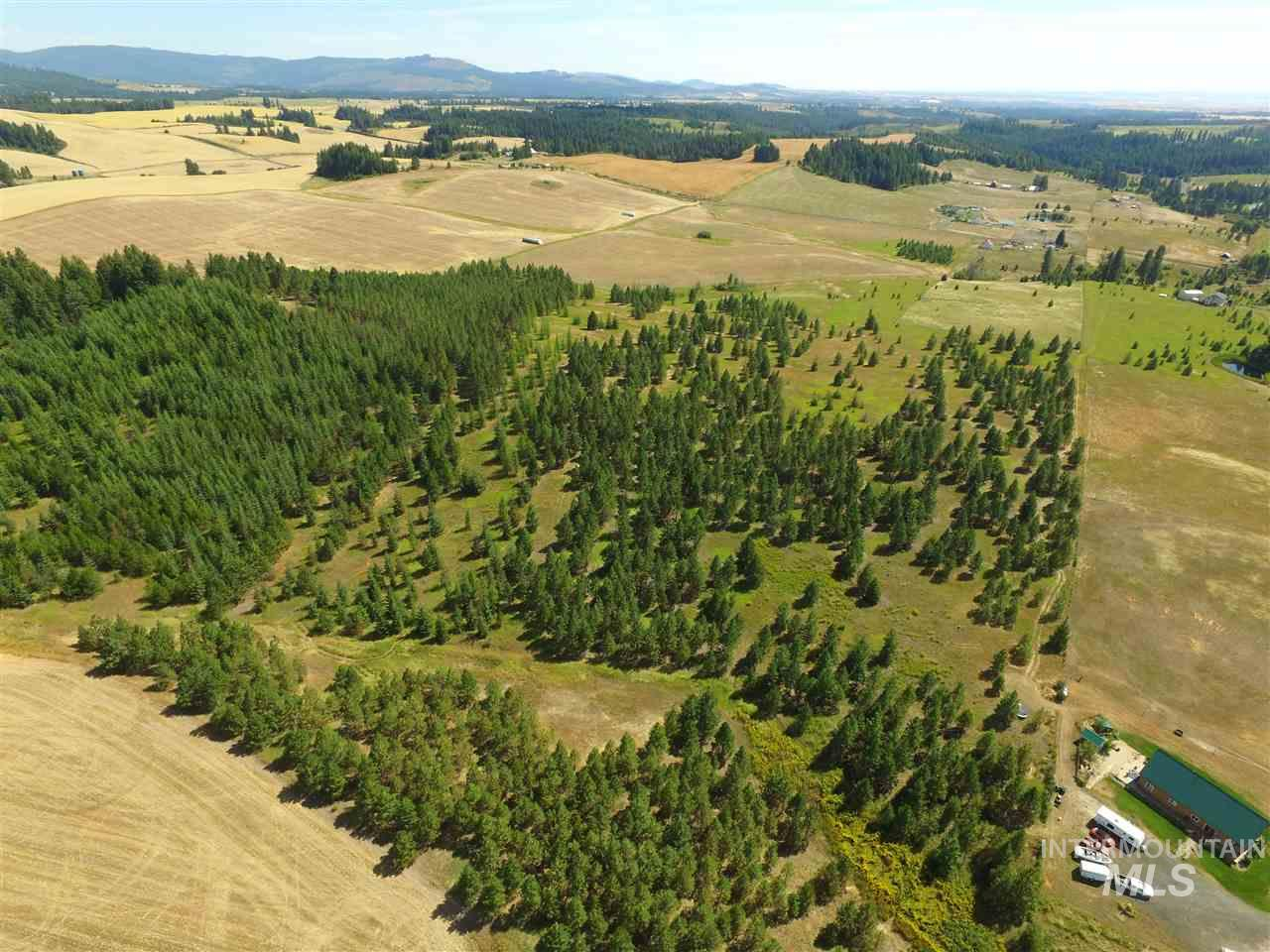Land for Sale at Tbd Highway 3 Deary, Idaho 83823