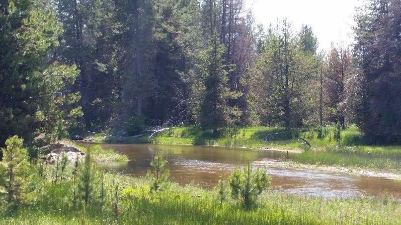 Additional photo for property listing at 10909 Hwy 55 10909 Hwy 55 Cascade, Idaho 83611
