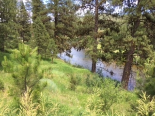 Additional photo for property listing at 521 Middle Fork Rd  Garden Valley, Idaho 83622