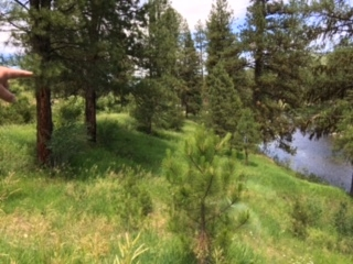 Additional photo for property listing at 521 Middle Fork Rd  Garden Valley, 爱达荷州 83622