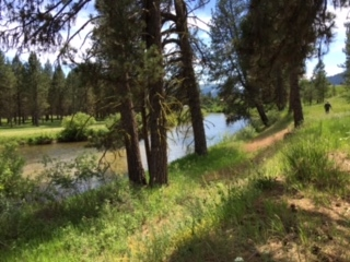 Additional photo for property listing at 523 Middlefork Rd  Garden Valley, Idaho 83622