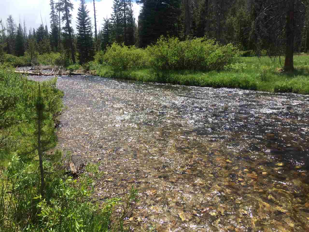 Land for Sale at Tbd Valley Creek Rd Stanley, Idaho 83278