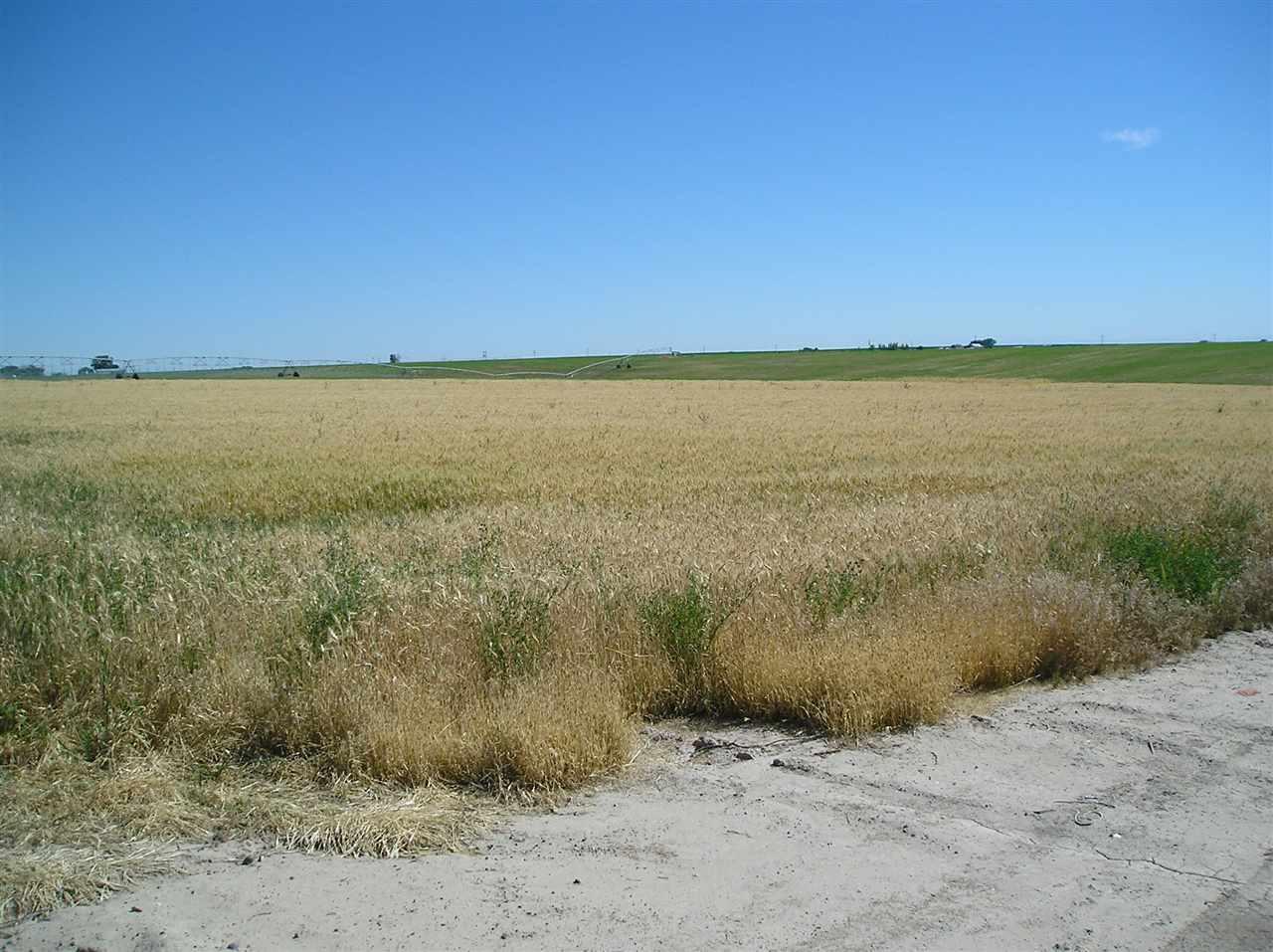 农场/牧场 为 销售 在 T.B.D. E Stephens Blv. Nyssa, 俄勒冈州 97913