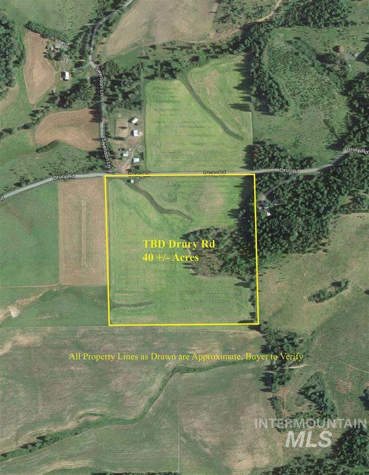 Agricultural Land 为 销售 在 TBD Drury Road TBD Drury Road Deary, 爱达荷州 83823