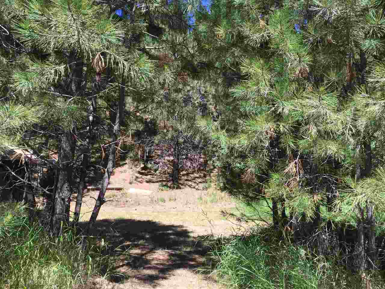 Additional photo for property listing at 510 Skyline Dr.  Cascade, Idaho 83611