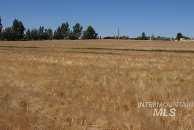 Additional photo for property listing at Tbd Lot 2 Block 1  Filer, Idaho 83328