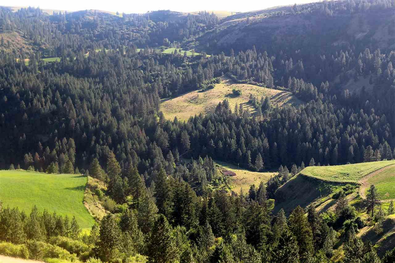 Terreno por un Venta en Parcel 1 Middle Potlatch Creek Road Juliaetta, Idaho 83535
