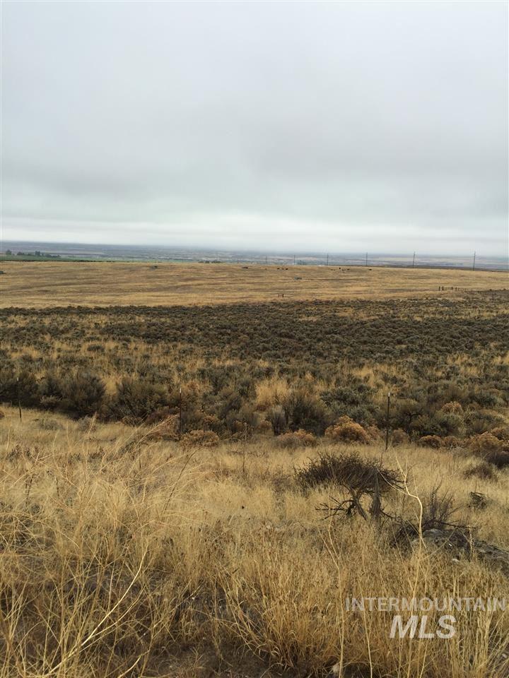 Land for Sale at Tbd Skeleton Butte Eden, Idaho 83325