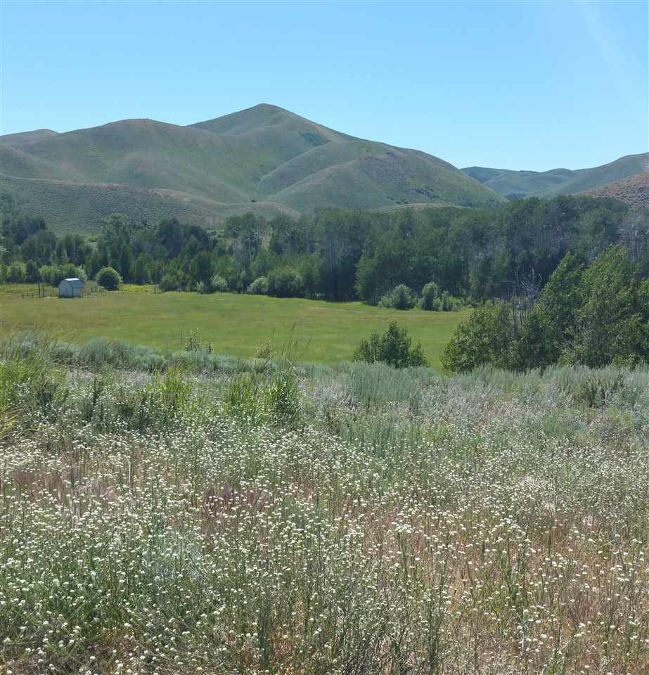 Lot 8 Silver Brush Subdivision 1, Fairfield, ID 83327
