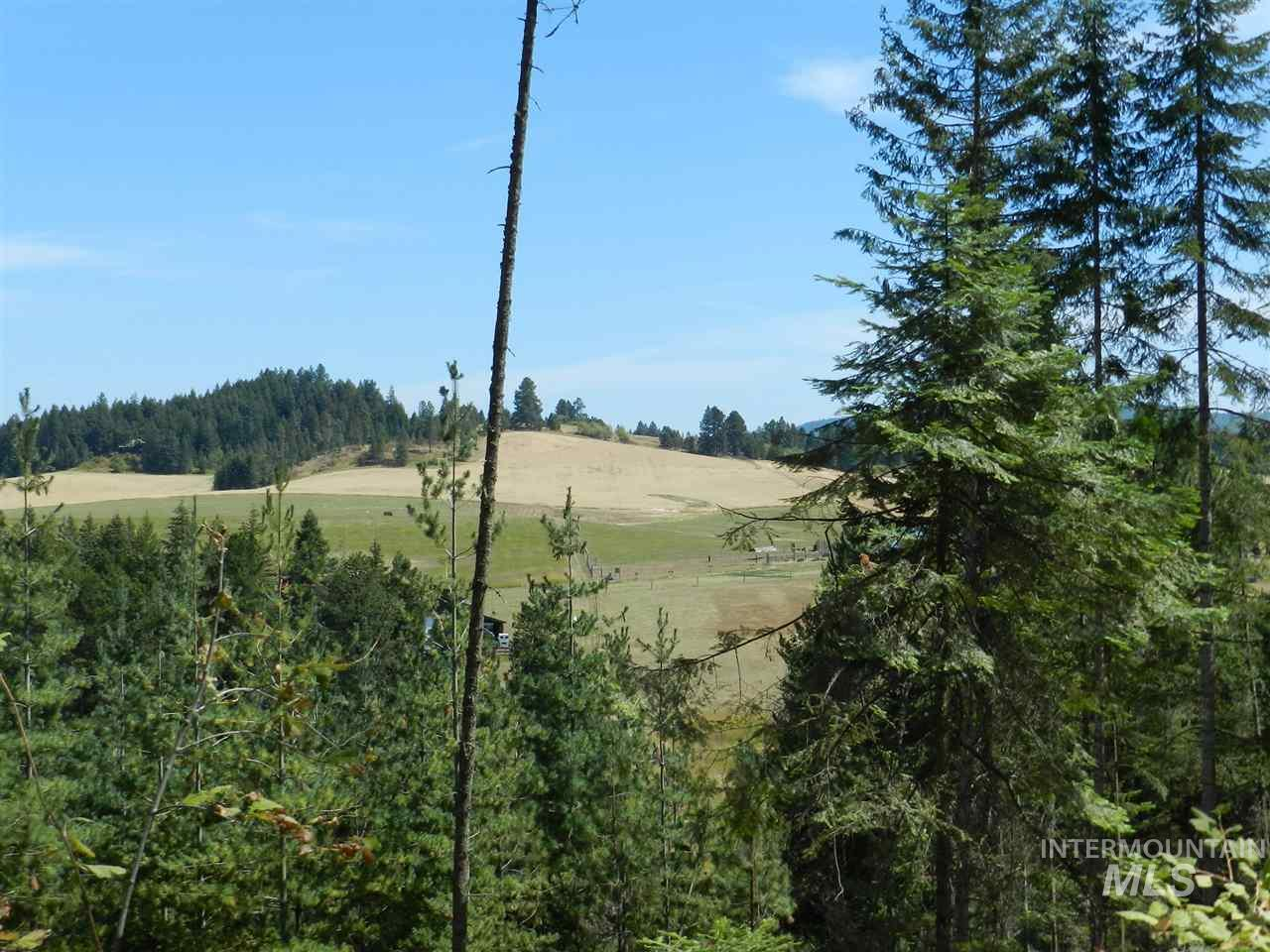 Land for Sale at Nna Hwy 3 Deary, Idaho 83823