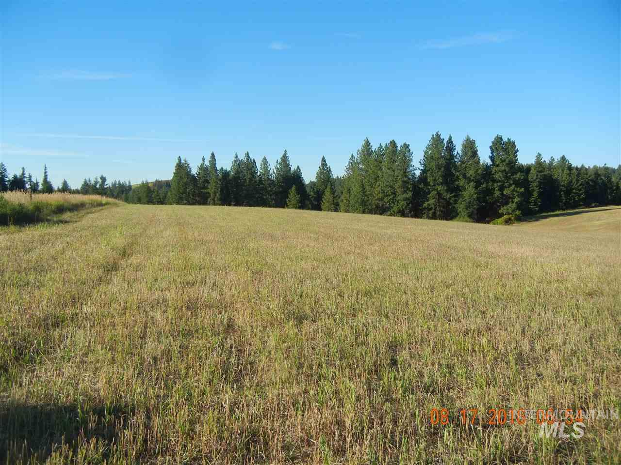 Land for Sale at 0 Highway 3 Kendrick, Idaho 83537