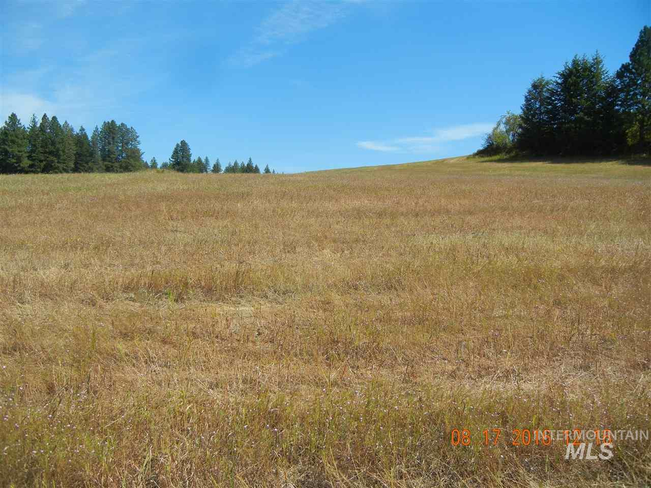 Land for Sale at 00 Highway 3 Kendrick, Idaho 83537