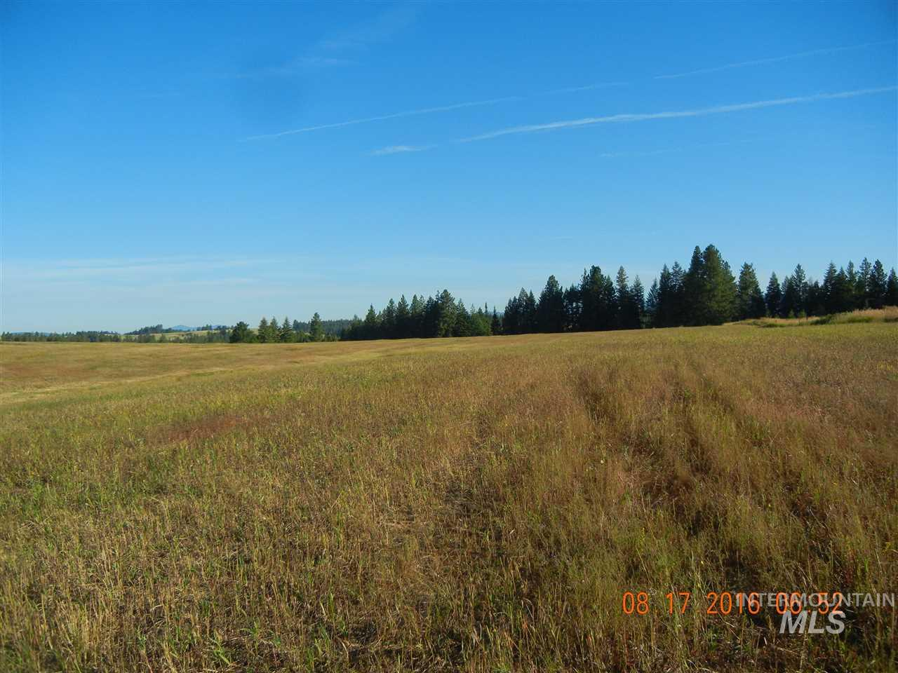 Land for Sale at 000 Highway 3 Kendrick, Idaho 83537
