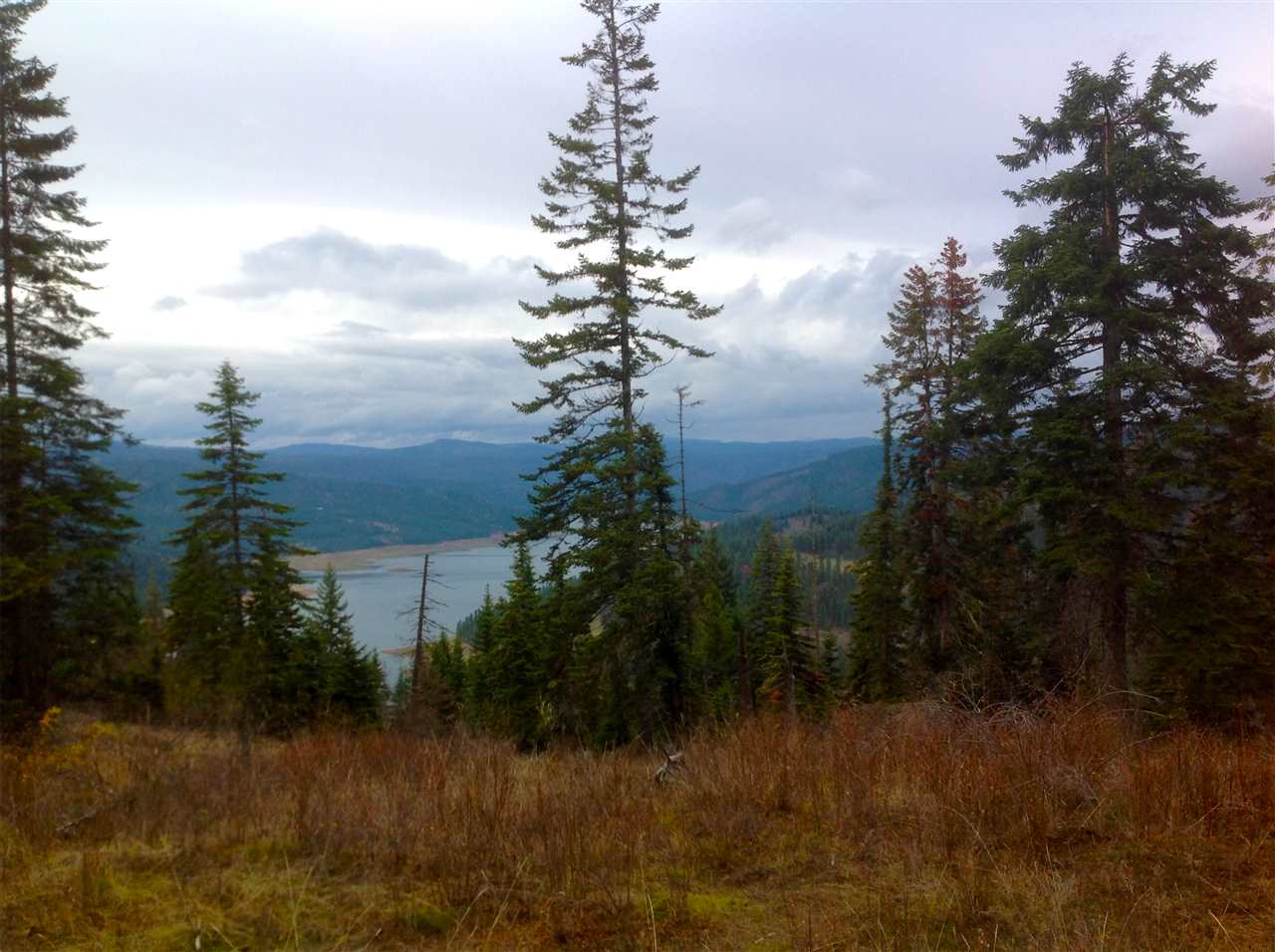 Land for Sale at Parcel 14 Tie Creek Orofino, Idaho 83544