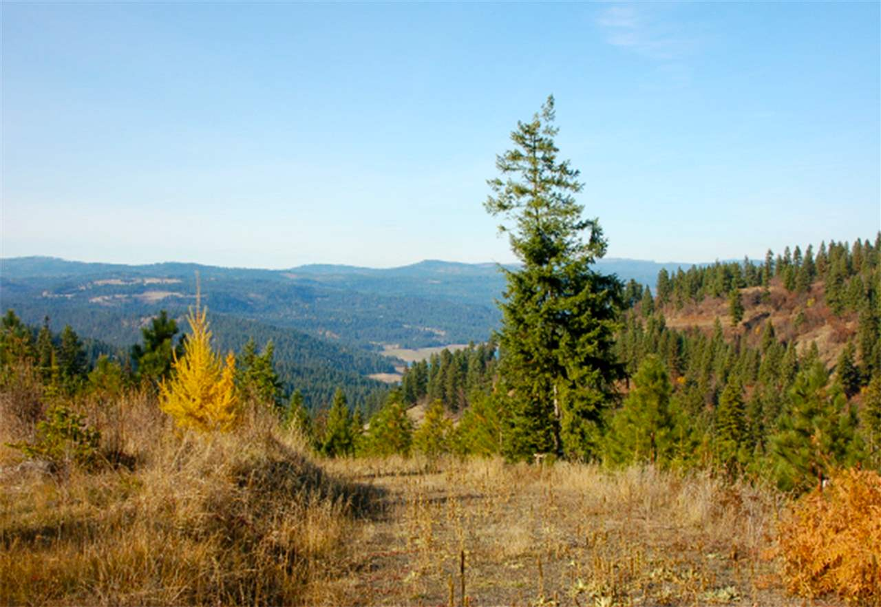 Recreational Property for Sale at Parcel 17 Tie Creek Road Parcel 17 Tie Creek Road Orofino, Idaho 83544