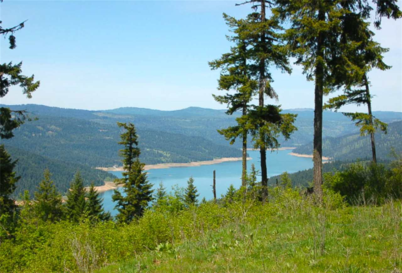 Land for Sale at Parcel 8 Tie Creek Road Orofino, Idaho 83544