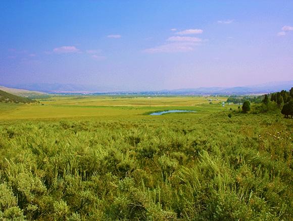 Land for Sale at Tbd Cash Lane Soda Springs, Idaho 83276